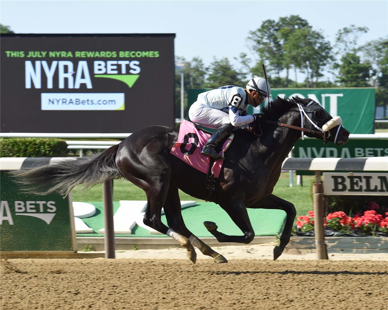 Ready Dancer Wins Allowance